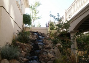 Dry Creek Landscaping