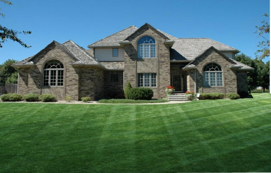 Thick And Plush Lawn