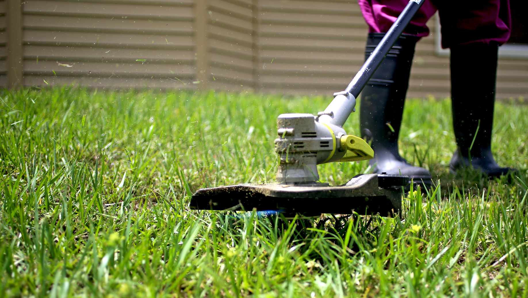 How To Prepare Your Lawn For Fall