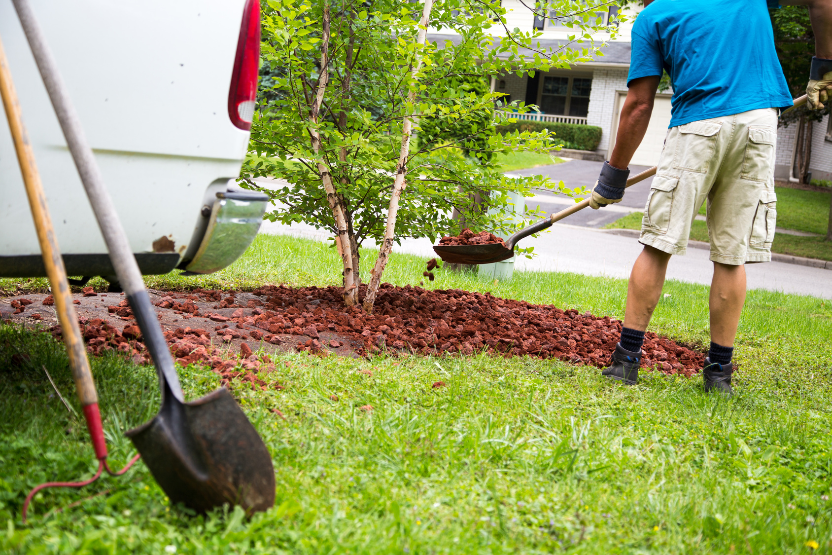 Advantages of Professional Landscaping