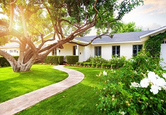 5 Landscaping Ideas For Front Yard