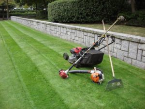 Landscaping tools on lawn