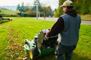 Man mowing lawn for lawn care services